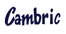 logo_cambric_.png